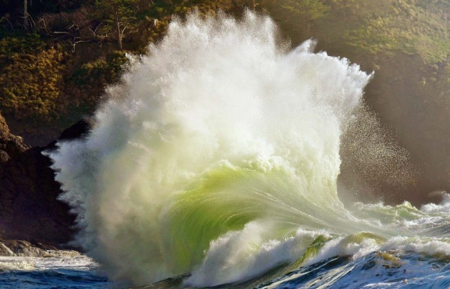 Хвиля