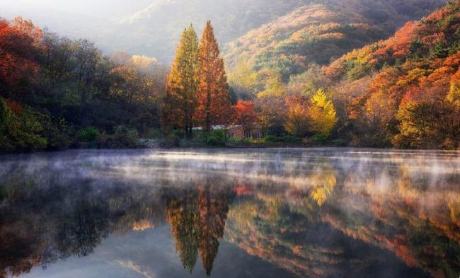 Казкова осінь