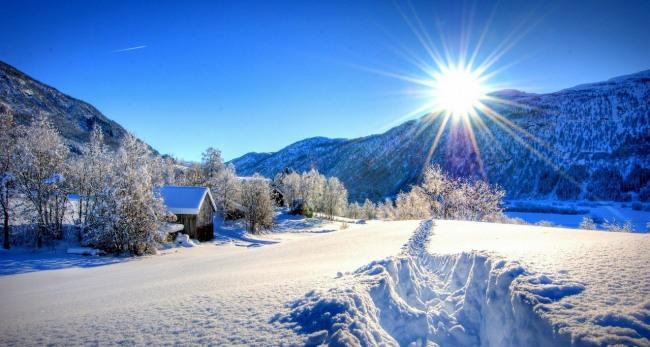 Зимова краса