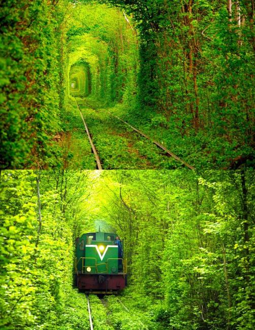 Зелений коридор для потяга