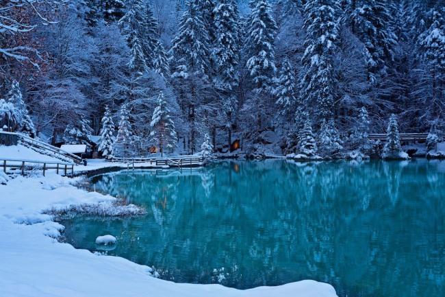 Озеро у зимовому лісі
