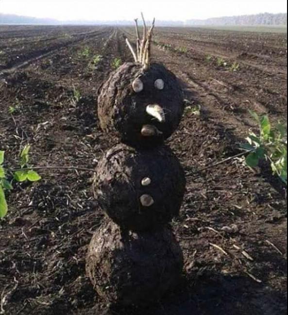 Сніговик в період глобального потепління