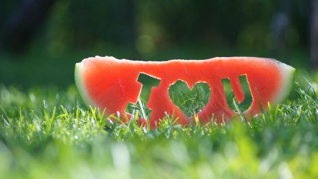 Кавунове зізнання в коханні