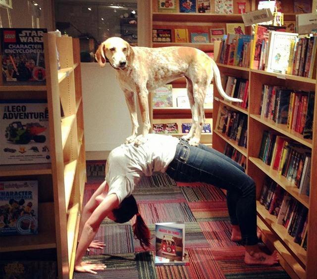 Йога з собакою