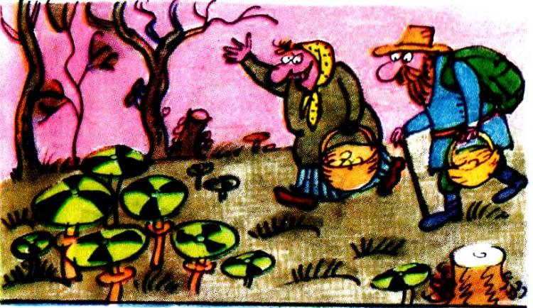Чорнобильські гриби