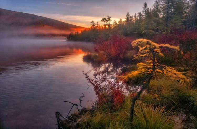 Схід сонця на озері