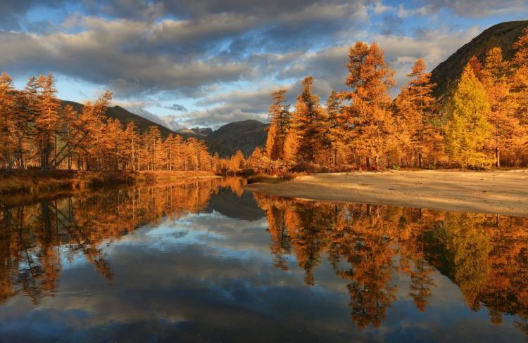 Золота осінь на берегах озера