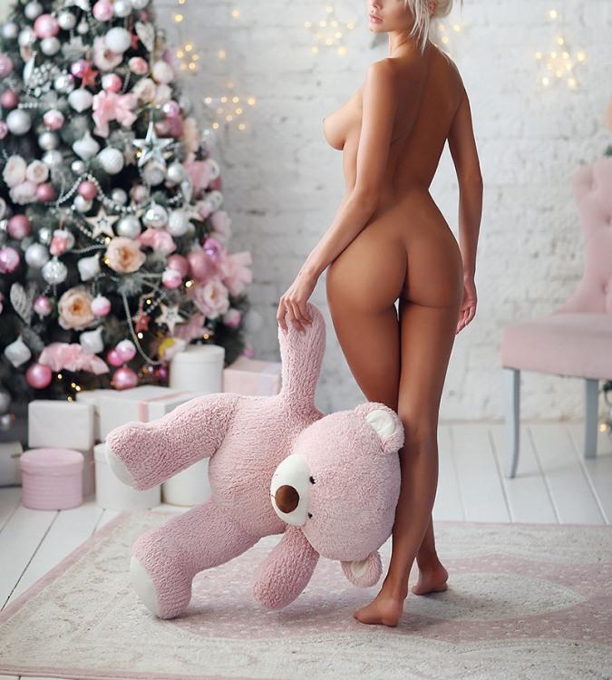 Господарка не кинула ведмедика і взяла з собою зустрічати новий рік
