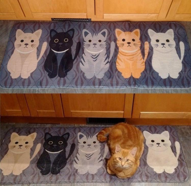 Килимок для кота