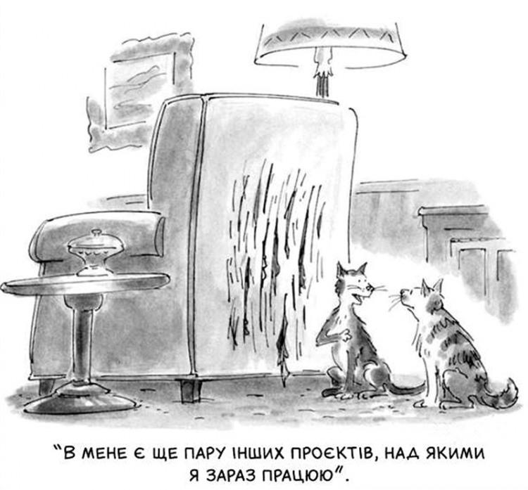 Котячий проект