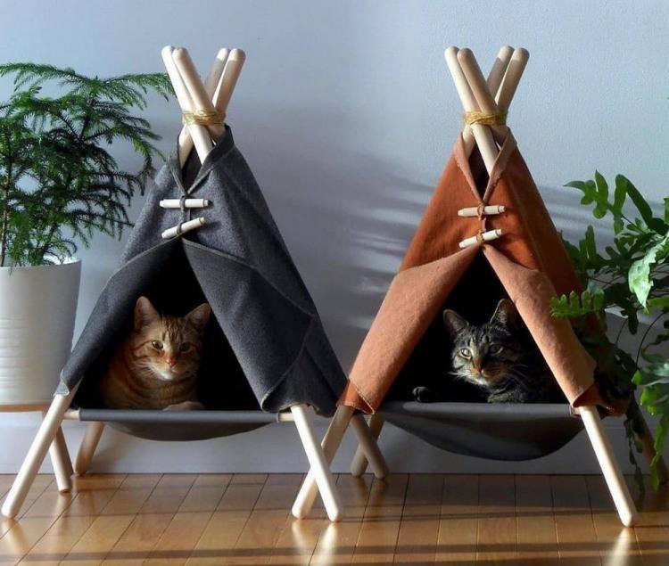 Коти в вігвамах