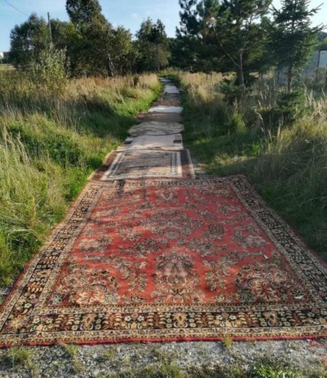 Шлях з килимів